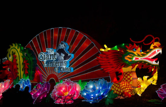 Giant Lanterns of China, Edinburgh Zoo, Scotland